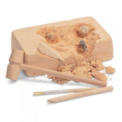 Fossil excavation kit