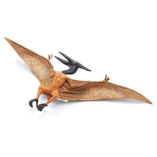 Pterosaur - The largest flying reptile!